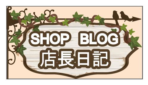 セサミオイルの瑞健 店長ブログ